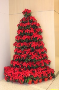 Poinsettia Half Tree