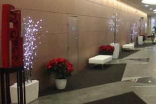 LED Trees in Troughs